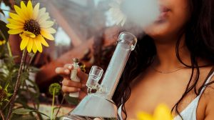 8 reasons why you should smoke weed every day