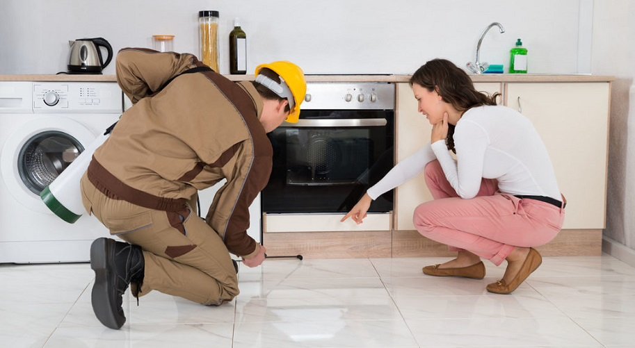 The Latest Do's And Don'ts For Every Home Owner Against Termite Control