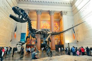 The Best Museums to Explore in the United States