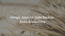 Take G SuiteGoogle Apps Backup to Prevent Risks [With Solution]