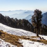 Visit The Most Unique Winter Destinations of Himachal Pradesh