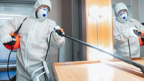 How To Improve Your Mold Remediation Business