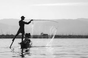 Going Fishing Here Are 3 Things You Must Bring